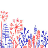 Rustic decorative plants and flowers collection. Hand drawn vintage vector design elements. Stock Images