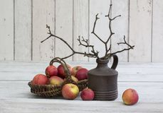 Rustic decoraton with apples and twigs in a vase on a white wooden background Royalty Free Stock Image
