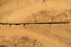 Rustic demolition wood section texture detail Royalty Free Stock Photography