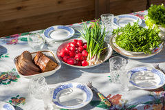 Rustic dinner outside. Russian village Stock Photos