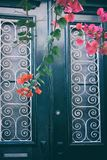 Rustic Door royalty free stock image