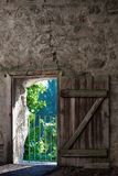 Rustic door in the wall Royalty Free Stock Image
