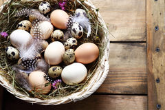 Rustic easter eggs Royalty Free Stock Photo