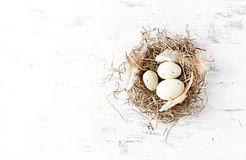 Rustic Easter Nest with Eggs and feathers Stock Photography
