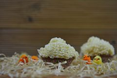 Rustic Easter time cupcakes with wood background some straw and decorations of fluffy chicks. Homemade cupcake decorated with frilly pattern buttercream. On Stock Photography