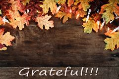 Fall Leaves Lights and Grateful text over Wooden Background. Rustic fall background of autumn leaves and decorative lights with text Grateful over a rustic Stock Photography