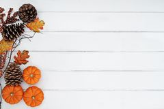 Pumpkins and Pine Cones Over Wooden Background. Rustic fall background of autumn leaves, pine cones and mini pumpkins with free copy space for text over a white royalty free stock photography