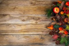 Rustic fall background with pumpkin, apples and cones. Rustic Thanksgiving  greeting card with pumpkin, apples and cones on the right side of old wooden table Stock Photos