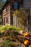Rustic fall setting Stock Images