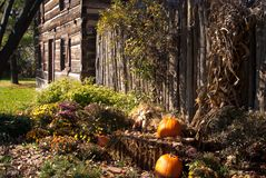 Rustic Fall Setting Royalty Free Stock Photo