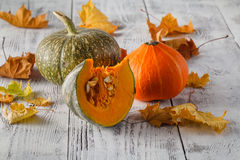 Rustic Fall Setting with a Pumpkin, Leaves Rustic Wood with copy royalty free stock photography