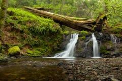 Rustic Falls on Orcas Island in the San Juan Islands, Washington. State stock photos
