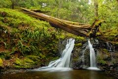 Rustic Falls on Orcas Island in the San Juan Islands, Washington. State stock photography