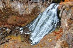 Rustic Falls Yellowstone National Park Royalty Free Stock Photos