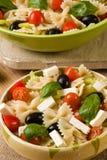 Rustic farfalle salad Royalty Free Stock Image