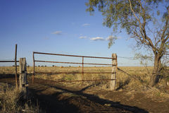 Rustic farm gate and hay bales. Farm gate leading to hay bales in Queensland Australia Stock Photo