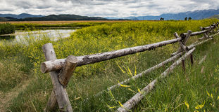 Free Rustic Fence In Wyoming Stock Photography - 61493992
