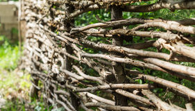 Rustic fence of interwoven twigs. Rustic fence of the interwoven twigs Royalty Free Stock Photos