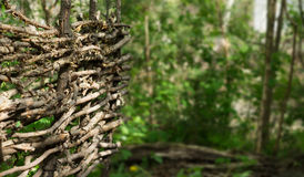 Rustic fence of interwoven twigs Stock Photo