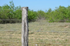 Rustic Fence Post Royalty Free Stock Photo