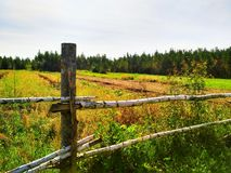 Rustic fence royalty free stock image