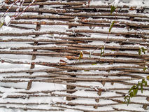 Rustic fence sticks Royalty Free Stock Image