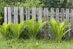 Rustic fence. Village. old rustic wooden fence. handmade. retro stock images