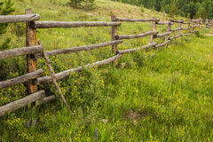 Rustic Fence and Wildflowers Stock Photos
