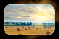 Rustic field with straw bales Stock Photo