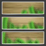 Rustic fir tree branches over wooden table flyers. Vector illustration Royalty Free Stock Photos