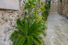 Rustic, flowerpots street in the tourist island of Mallorca, Val Royalty Free Stock Photos