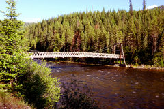 Rustic Foot Bridge - Idaho wilderness Stock Image