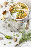 Rustic french quiche with peas and walnuts on baking dish on wooden table with thyme bouquet Stock Images