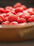 Rustic french raspberry fruit compote preserve Royalty Free Stock Image