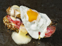 Rustic french sandwich croque madam Royalty Free Stock Photo