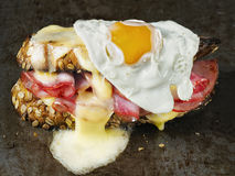 Rustic french sandwich croque madam Royalty Free Stock Photography