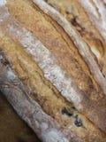 Rustic fresh bake bread Stock Photos