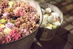 Rustic galvanised pails filled with summer flowers. Assorted summer flowers in a full frame background with hydrangeas and roses viewed close up from above in a royalty free stock photography