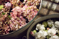 Rustic galvanised pails filled with summer flowers. Assorted summer flowers in a full frame background with hydrangeas and roses viewed close up from above in a stock photography