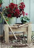Rustic garden bench Royalty Free Stock Images