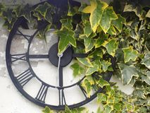 Rustic garden clock with ivy leaves, Crookham, Northumberland Uk. Rustic garden clock with ivy leaves, Crookham, Northumberland. England,UK Stock Photo