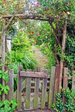 Rustic Garden Gate. With vines and vegetation, leading to a garden path stock photography