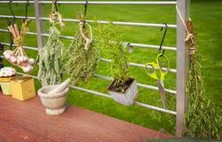 Rustic garden kitchen Stock Images