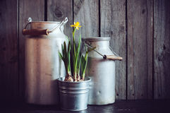 Rustic gardening Stock Photo