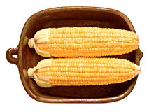 Rustic golden raw uncooked corncob Royalty Free Stock Photography