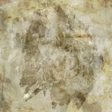 Rustic Grunge background Royalty Free Stock Image