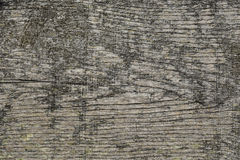 Rustic grunge seamless wooden background horizontal. Old grunge wooden background texture Stock Images