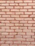 Rustic grungy urban brick wall Royalty Free Stock Photos