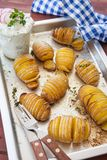 Rustic hasselback potatoes Royalty Free Stock Photography