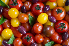Rustic Heirloom Cherry Tomato Salad with Basil and Olives Stock Image